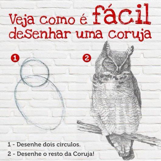 Como desenhar uma coruja