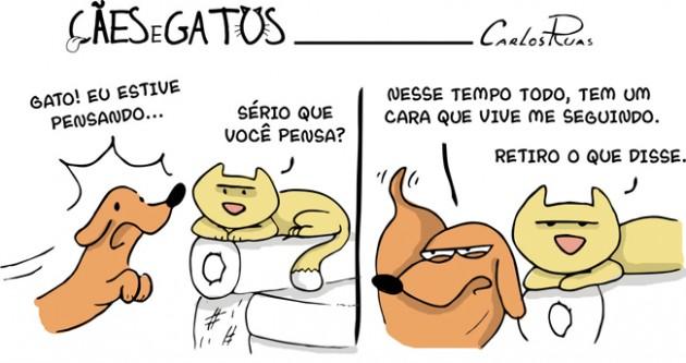 caes e gatos02